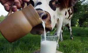 คนไทยดื่มนมน้อยกว่าประเทศอื่นทั่วโลก 4-7 เท่า